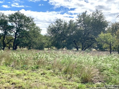Floresville Residential Lots & Land For Sale: 388 Cimarron Dr