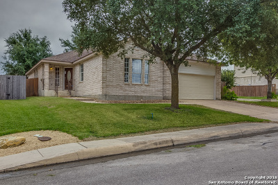 San Antonio TX Single Family Home New: $253,000
