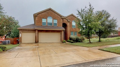 San Antonio TX Single Family Home New: $349,900