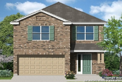 San Antonio TX Single Family Home New: $264,629
