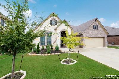 San Antonio Single Family Home New: 25334 Pleasant Beach