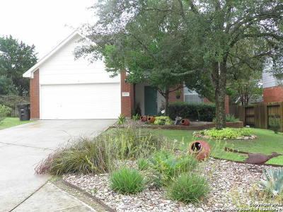 San Antonio Single Family Home New: 24942 Crescent Trace
