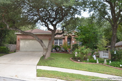 Single Family Home For Sale: 205 Doral Ct