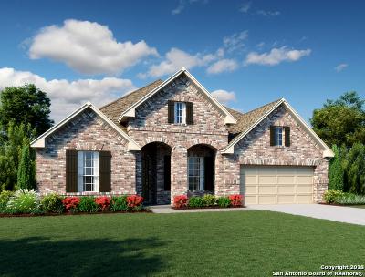 New Braunfels TX Single Family Home New: $424,990