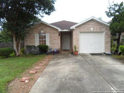 San Antonio Single Family Home New: 9415 Hays Pt