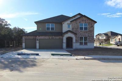 San Antonio Single Family Home New: 217 Winged Teal