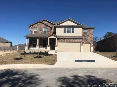 San Antonio TX Single Family Home New: $370,805