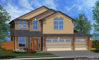 San Antonio TX Single Family Home New: $309,662