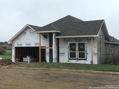 Fredericksburg TX Single Family Home New: $292,000