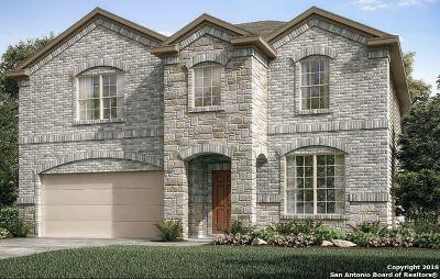 San Antonio TX Single Family Home New: $266,990