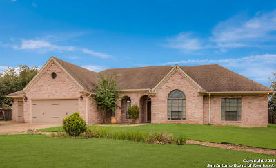Atascosa County Single Family Home For Sale: 328 Edgehill Dr