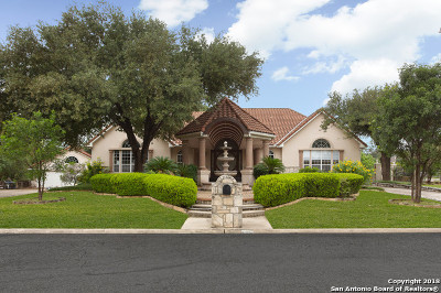 Castle Hills Single Family Home For Sale: 101 Lemonwood Dr