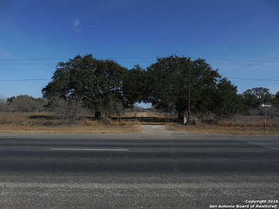 Atascosa County Farm & Ranch For Sale: 11620 State Hwy 16