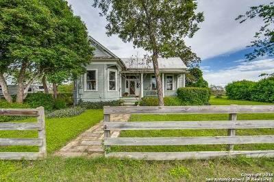 Seguin Single Family Home For Sale: 451 Willmann Rd