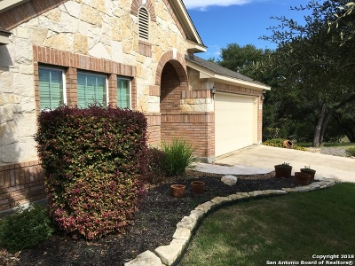 Boerne Single Family Home For Sale: 208 Chisholm Drive