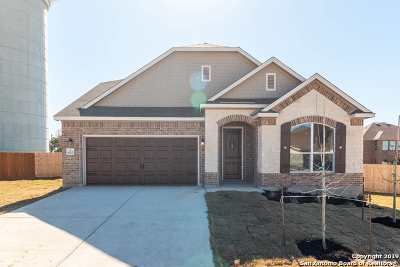Cibolo Single Family Home For Sale: 405 Landmark Stone