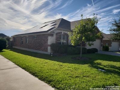 Austin Single Family Home For Sale: 2221 Buffalo Tundra Dr