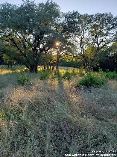New Braunfels Residential Lots & Land For Sale: 10006 Kopplin Rd