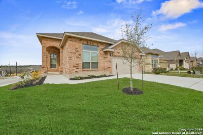 Bexar County Single Family Home Price Change: 1939 Sirius Grove