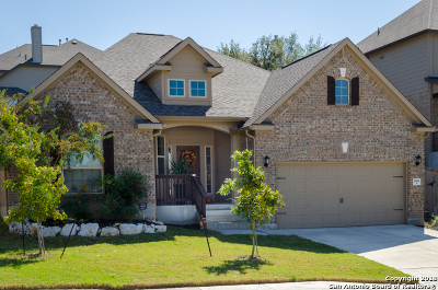 Single Family Home For Sale: 25614 Willard Path