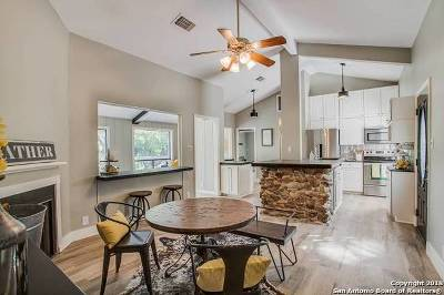 Boerne Single Family Home For Sale: 234 Doeskin Dr