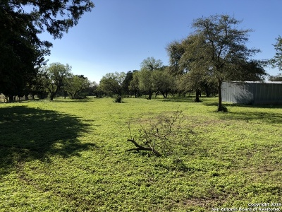 Guadalupe County Residential Lots & Land For Sale: 1690 Weil Rd