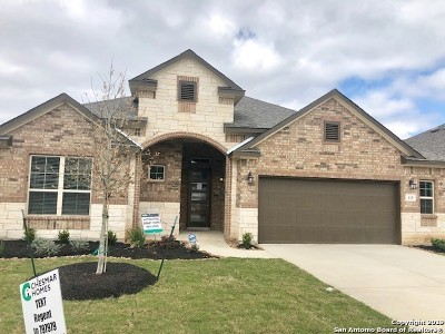 Boerne Single Family Home Back on Market: 115 Telford Way