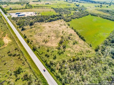 Atascosa County Residential Lots & Land For Sale: 001 Highway 16