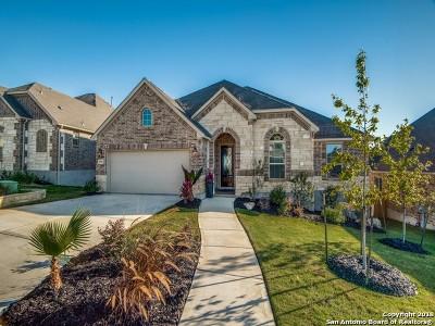 Single Family Home For Sale: 25942 Preserve Peak