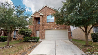 Single Family Home Active Option: 2522 Silverton Wind