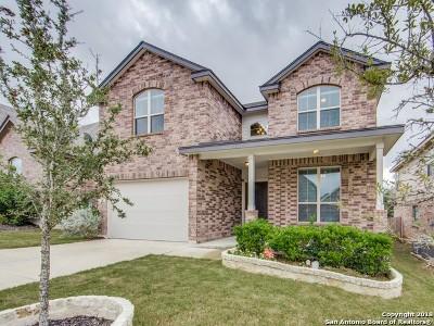 Boerne Single Family Home For Sale: 8314 Hydrangea Path
