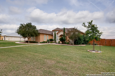 Bexar County Single Family Home For Sale: 8307 Quail Field