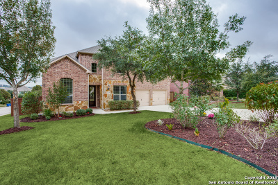 Stonewall Estates, Stonewall Ranch Single Family Home For Sale: 21618 Chaucer Hill