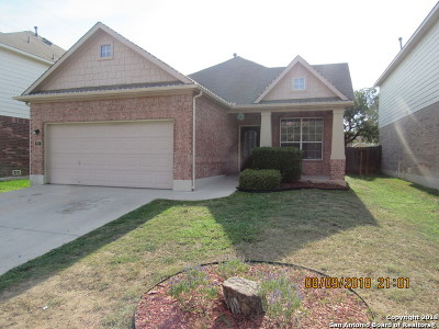 Bexar County Single Family Home Price Change: 927 Palladio Pl