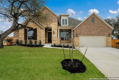 Single Family Home For Sale: 1718 Buckner Pass