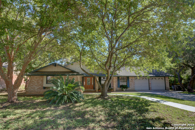 New Braunfels Single Family Home For Sale: 213 Briarwood Dr