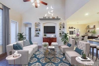 Bexar County Single Family Home For Sale: 20222 Ashford Vista