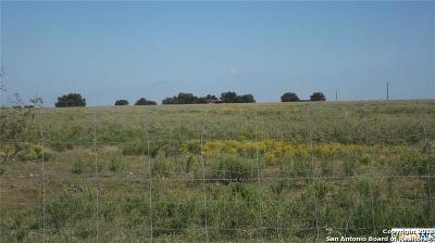 Guadalupe County Residential Lots & Land New: 10 Acs S. Tract Ilka Rd