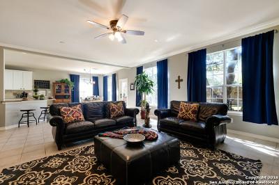 Single Family Home For Sale: 24203 Big Bear