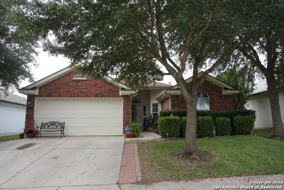 Converse Single Family Home New: 4043 Mistflower Dr