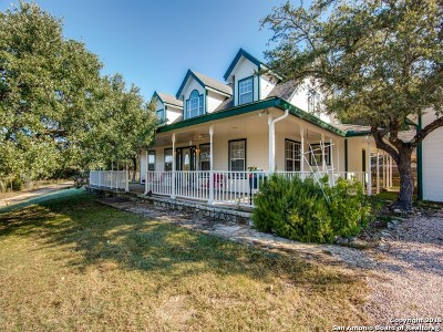 Boerne Single Family Home For Sale: 225 Skyview Dr