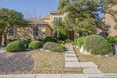Boerne Single Family Home For Sale: 8835 Napa Lndg