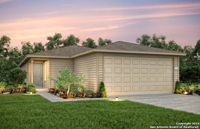 New Braunfels Single Family Home Price Change: 310 Mistflower