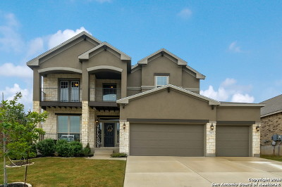New Braunfels Single Family Home For Sale: 340 Green Heron