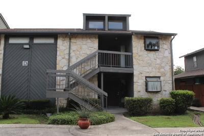 San Antonio Condo/Townhouse New: 3843 Barrington St #215D