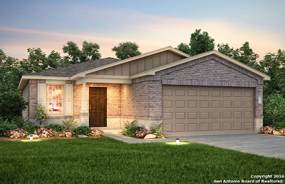 New Braunfels Single Family Home For Sale: 213 Texas Thistle