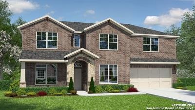 San Antonio Single Family Home New: 8913 Virginia Rye