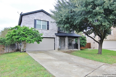 New Braunfels Single Family Home New: 315 Scenic Meadows