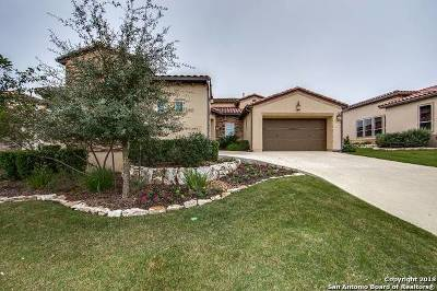 San Antonio Single Family Home New: 22831 Estacado