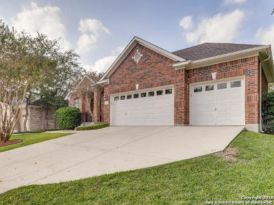 Schertz Single Family Home New: 409 Frank Baum Dr